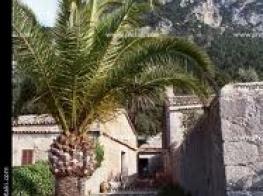 Ermita de la Santíssima Trinitat.jpeg