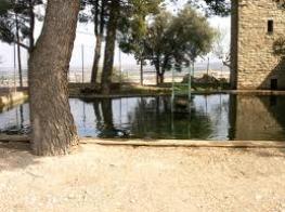 Parc de Sant Eloi.jpeg