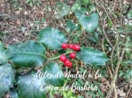 actes_de_nadal_a_laconca_de_barbera.png