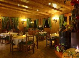 vista_restaurant_els_ceps_marca_aigua1.jpg