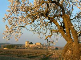 castell_de_milmanda.jpg