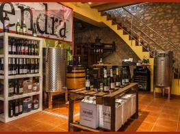 visendra, les pobles, winery, bodega, alt camp