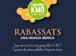 camins_km0_rabassats_una_granja_iberica_siii_ac.jpg