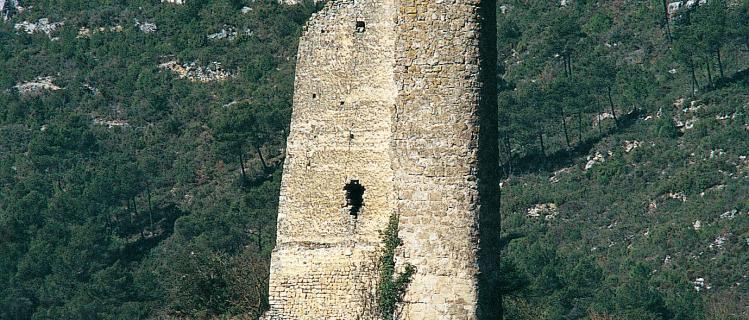 Castell de Santa Perpètua a Pontils