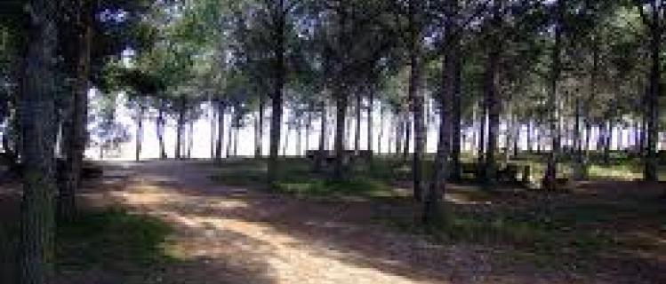 Parc de Montalbà