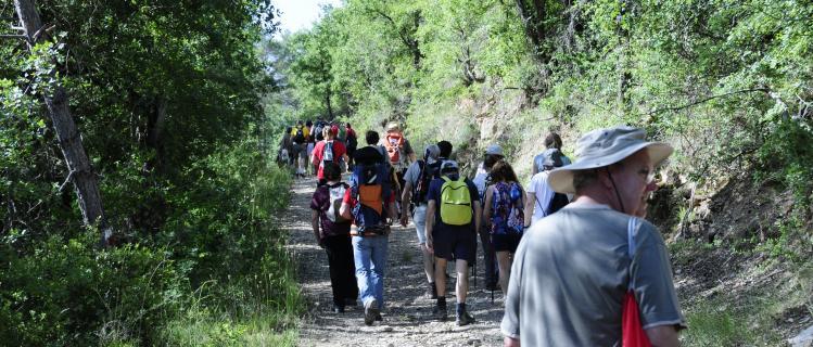 Excursions per fer en família entorn a Vallfogona