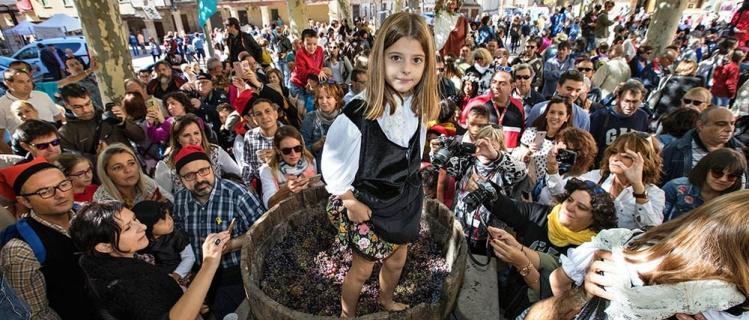 Festa de la Verema i el Vi de Verdú