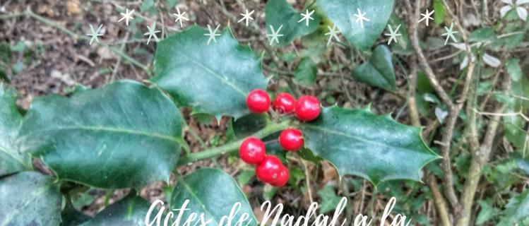 Actes de Nadal a Pira