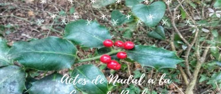 Activitats de Nadal a Montblanc
