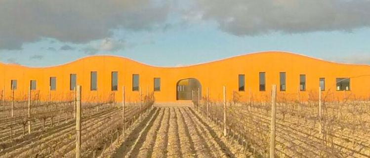 Celler Boldú Viticultors