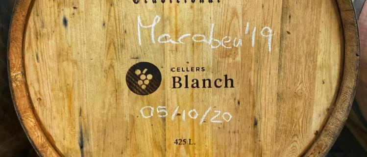 Cellers Blanch