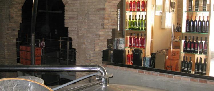 Wine Cellar of Barberà de la Conca