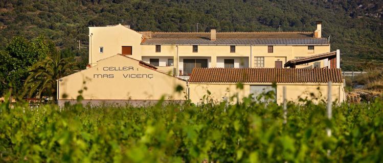 Winery Mas Vicenç