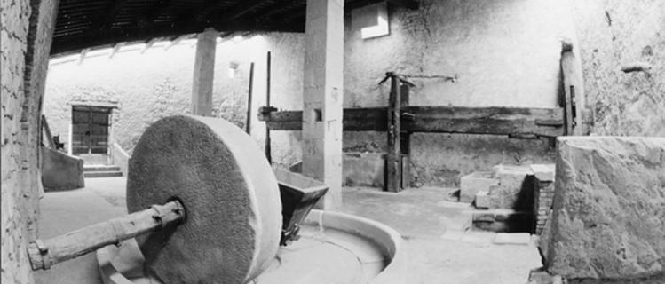 Antic molí d'oli Maurici Massot