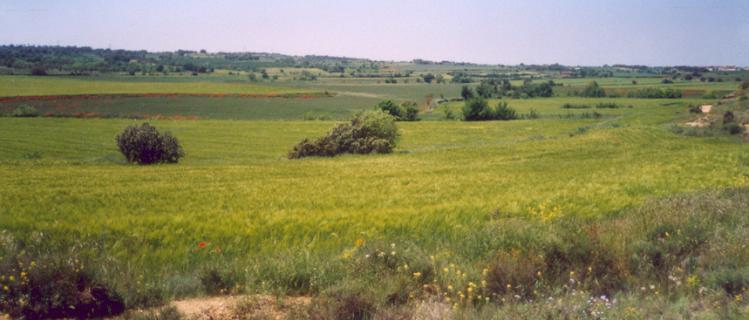 Ribera del Sió (l'Urgell)