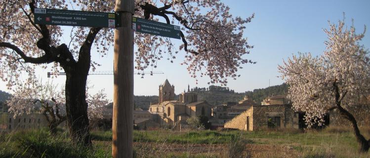 2. Poblet - Vallbona de les Monges